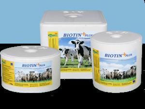 Biotin-Plus